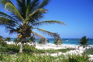 Autovuokraamo Cancun